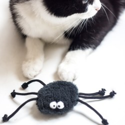 Cat toy SPIDER